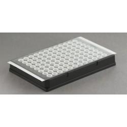 qPCR Plate Seal